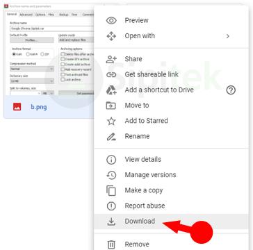 Download File Google Drive
