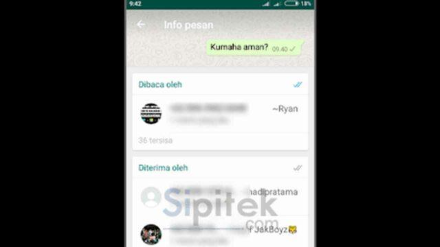 cara mengetahui orang yang membaca pesan grup WhatsApp