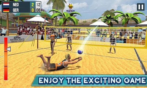 Beach VolleyBall Champions 3D