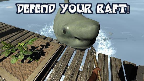 Raft Survival