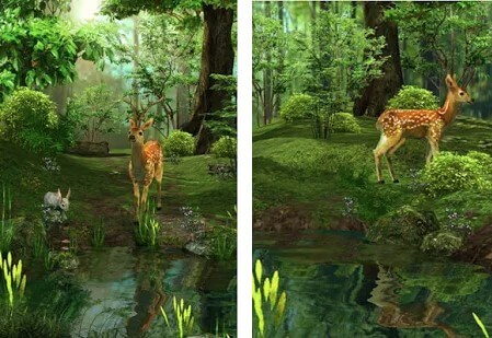 3D Nature Deer Live Wallpaper